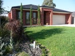 18 Cassinia Court, Thurgoona, NSW 2640
