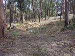 Lot 123, Dales Creek Avenue, Dales Creek, Vic 3341