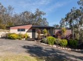 51 Paroa Court, Sandford, Tas 7020