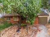 19 Hollard Avenue, Grange, SA 5022