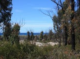 Lot 20 Tasman Highway, Scamander, Tas 7215