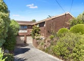 3 Cottonwood Avenue, Vermont South, Vic 3133