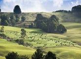 40 Mount Myrtle Road, Elliott, Tas 7325