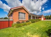 40 Integrity Drive, Youngtown, Tas 7249