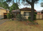 228 Henry Lawson Drive, Georges Hall, NSW 2198
