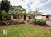 14 Seagull Way, Yangebup, WA 6164