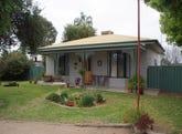 22 Nelbuck Street, Renmark, SA 5341