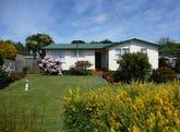 17 Rose Street, Wynyard, Tas 7325