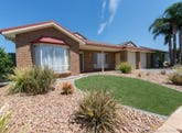 11 Dene Street, Walkley Heights, SA 5098