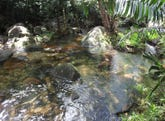 Lot 193 Stonewood Road DIWAN, Daintree, Qld 4873
