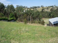 Lot 103, Lot 103 Hilltop Parkway 'Tallwoods', Hallidays Point, NSW 2430