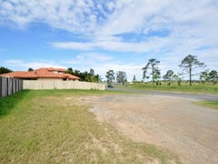 58 Rhodium Crescent, Hope Island, Qld 4212