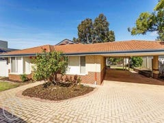 25a Shirley Avenue, Mount Pleasant, WA 6153