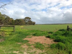 Lot 104 Thomas Crescent, Monarto South, SA 5254
