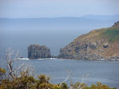 L5 Skeggs Avenue, White Beach, Tas 7184