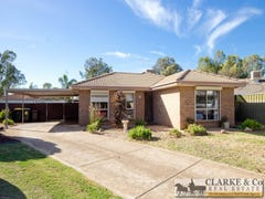 10 Harvest Court, Andrews Farm, SA 5114
