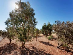 Lot 102, 15 Bodeman Road, Wandi, WA 6167