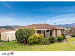 36 Village Drive, Kingston, Tas 7050