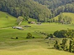376 Fridays Creek Road, Upper Orara, NSW 2450