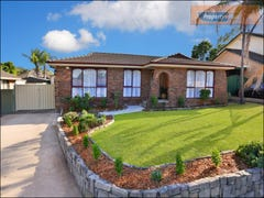 9 Ibis Place, St Clair, NSW 2759