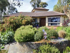 26 Offler Avenue, Bellevue Heights, SA 5050