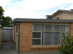 31 McKay Avenue, Windsor Gardens, SA 5087