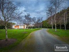 9 Pinehill Drive, Pakenham, Vic 3810