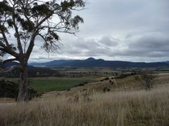. South Esk River Frontage - Grazing Country, Avoca, Tas 7213