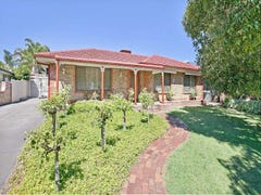 11 Redwood Avenue, Redwood Park, SA 5097