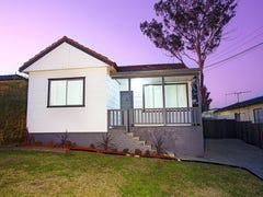 9 Dundee Street, Cambridge Park, NSW 2747