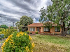 11 Cheam Drive, Reynella, SA 5161