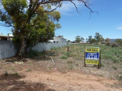 29 Wolseley Terrace, Quorn, SA 5433