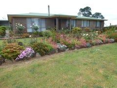 131 Racecourse Road, Winnaleah, Tas 7265