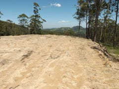 Lot 22 Cassells Road, Mount Royal, NSW 2330