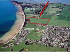 1000 NORSEMENS ROAD, Coronet Bay, Vic 3984