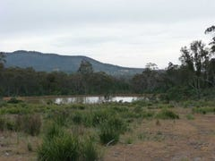 1435 Blessington Road, White Hills, Tas 7258