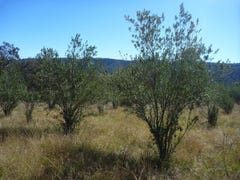 Lot 32 Inverramsay Road, Goomburra, Qld 4362