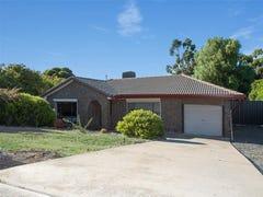 13 Adams Road, Sheidow Park, SA 5158
