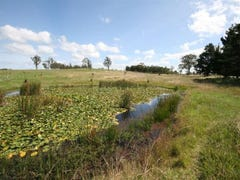 Lot 203 Bruxner Highway, Tenterfield, NSW 2372