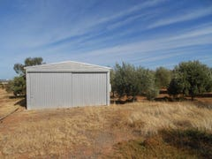 132 Scenic Drive, Napperby, SA 5540