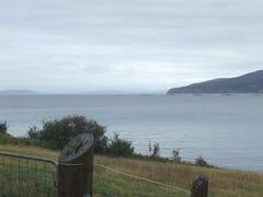 568 White Beach Road, White Beach, Tas 7184