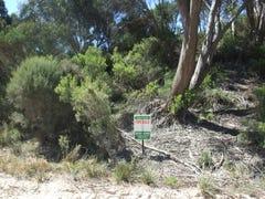 Lot 193, Island Beach Road, Island Beach, SA 5222