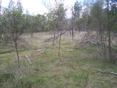 Lot 45 Fagans Rd, Tara, Qld 4421