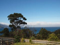 116 Blowhole Rd, Eaglehawk Neck, Tas 7179