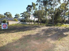 79 South Street, Medowie, NSW 2318