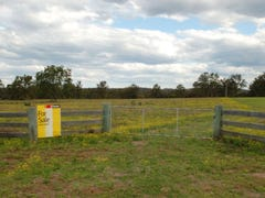Lot,Lot 170 Kangaroo Creek Road, Coutts Crossing, NSW 2460