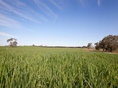 163 Cooper Road (Western Flat), Naracoorte, SA 5271