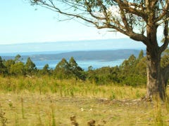 453 Woodbridge Hill Road, Gardners Bay, Tas 7112