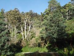 PID 6805678 Lottah Road, Goulds Country, Tas 7216