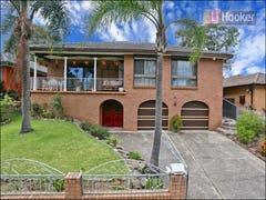 141 Walters Road, Blacktown, NSW 2148